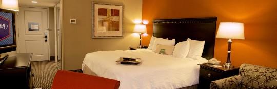 Hampton-Inn-Biltmore-Sqaure-King-Study-Room (1)