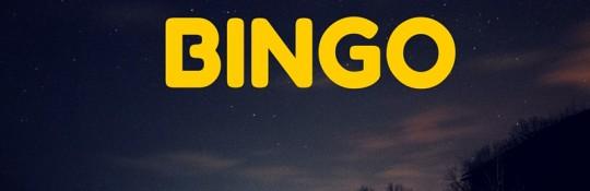 BINGO-4