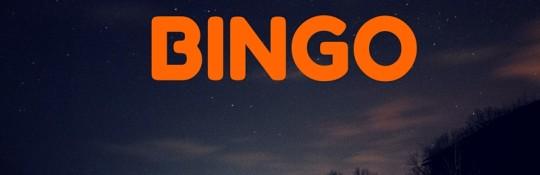 BINGO-6
