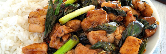 Thai-Basil-Chicken-31